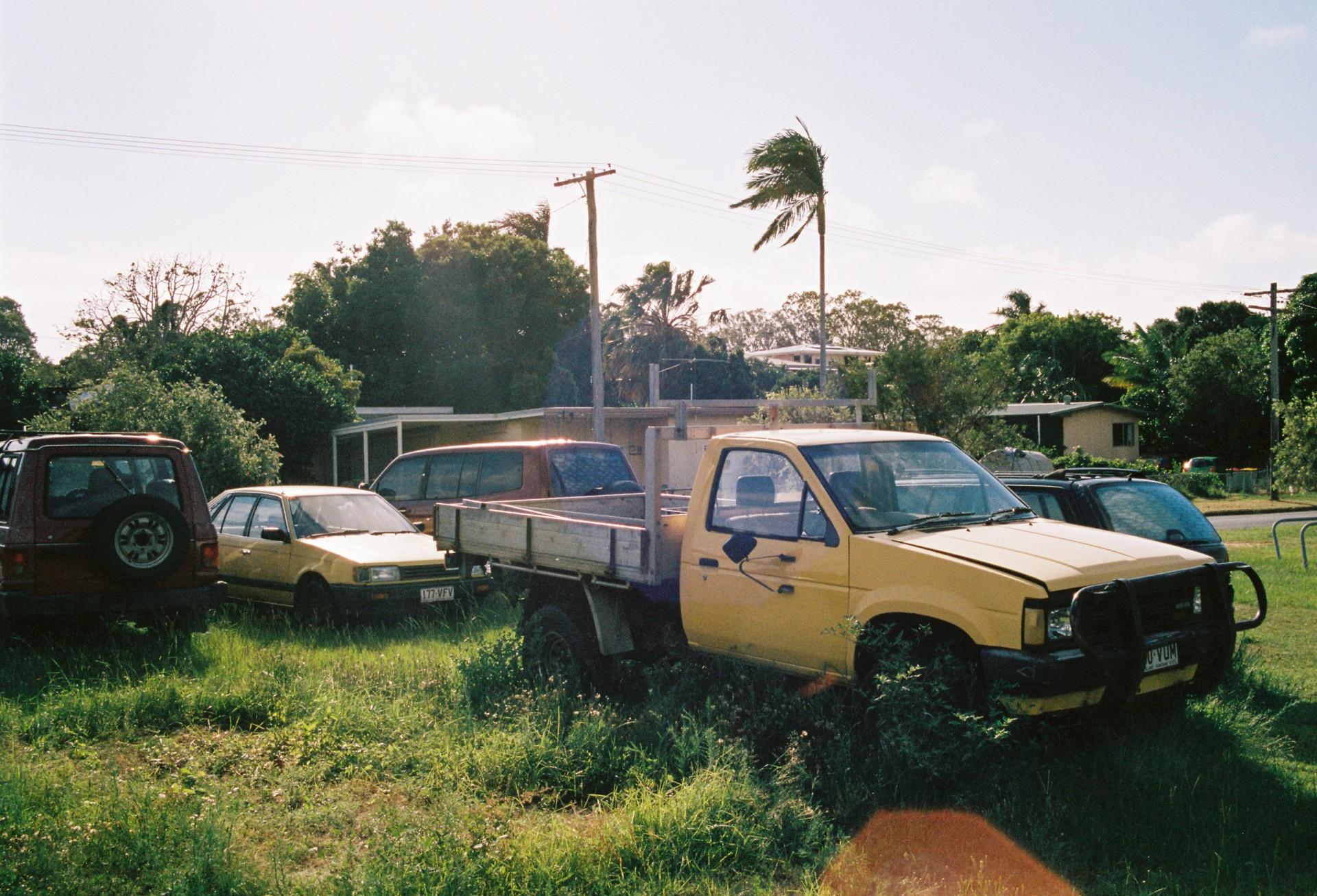 Kelvin Bugler High Tropics